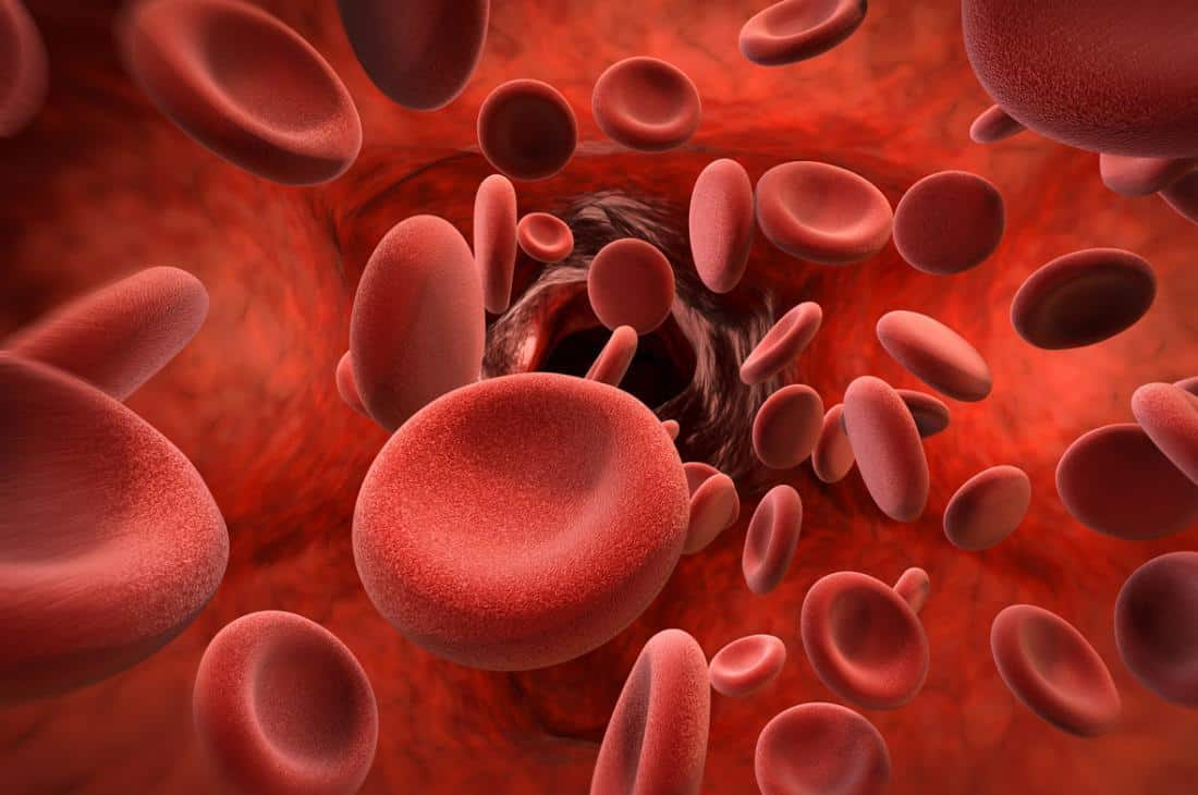 d image of blood cells in artery